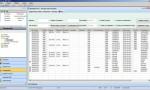 Beelogic TMS: Controlo dos serviços em execução
